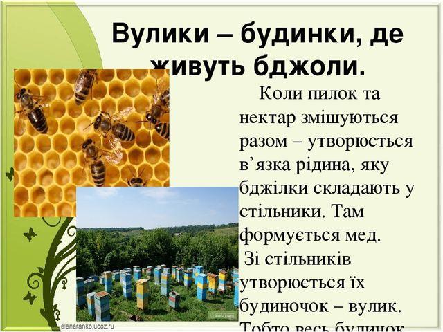 Вулики – будинки, де живуть бджоли. Коли пилок та нектар змішуються разом – у...