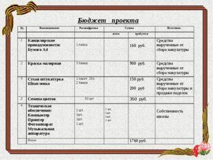Бюджет проекта №Наименование Расшифровка Сумма Источник  всеготребуе
