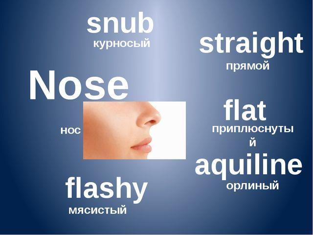 Nose нос snub курносый straight прямой flat приплюснутый aquiline орлиный fl...
