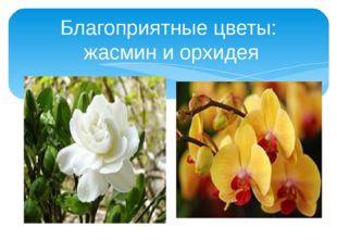 Благоприятные цветы: жасмин и орхидея