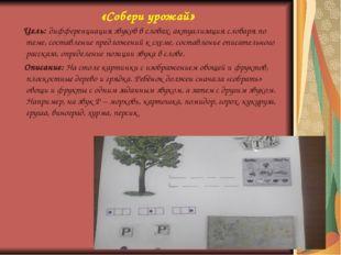 «Собери урожай» Цель: дифференциация звуков в словах, актуализация словаря по