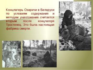 Концлагерь Озаричи в Беларуси по условиям содержания и методам уничтожения сч