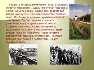 Бараки, в которых жили узники, были ограждены колючей проволокой. Вдоль нее с