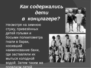 Как содержались дети в концлагере? Несмотря на зимнюю стужу, привезённых дете