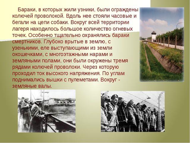 Бараки, в которых жили узники, были ограждены колючей проволокой. Вдоль нее с...