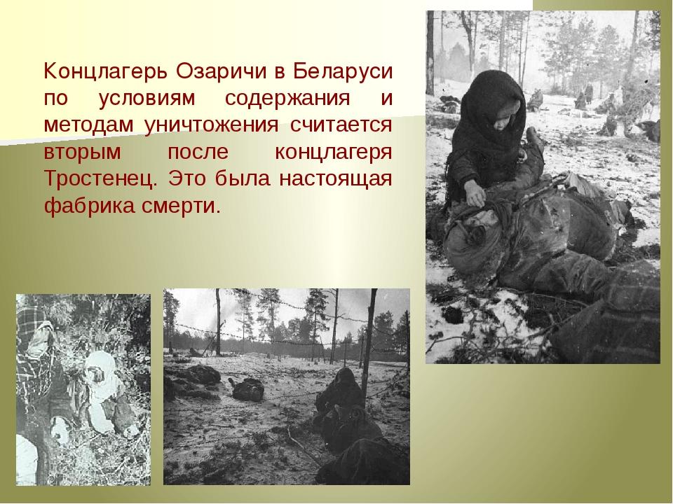 Концлагерь Озаричи в Беларуси по условиям содержания и методам уничтожения сч...