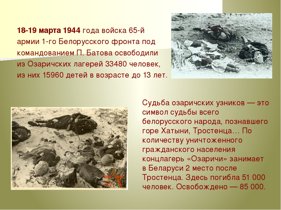 18-19марта 1944года войска 65-й армии 1-го Белорусского фронта под командов...