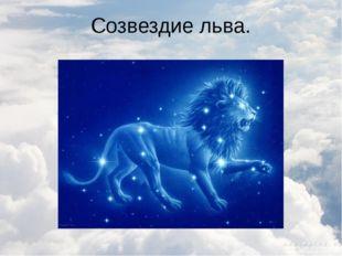 Созвездие льва.