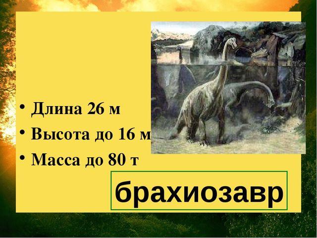 Длина 26 м Высота до 16 м Масса до 80 т