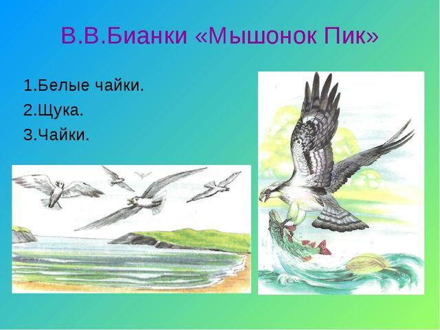 В.В.Бианки «Мышонок Пик» 1.Белые чайки. 2.Щука. 3.Чайки.