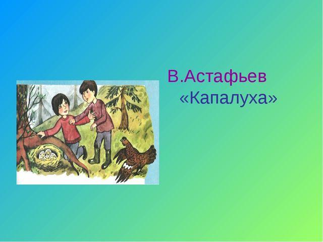 В.Астафьев «Капалуха»