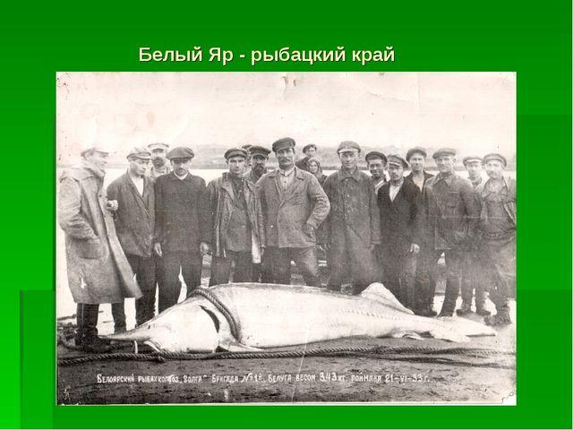 Белый Яр - рыбацкий край