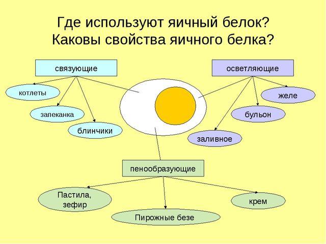 Где используют яичный белок? Каковы свойства яичного белка? связующие пенообр...