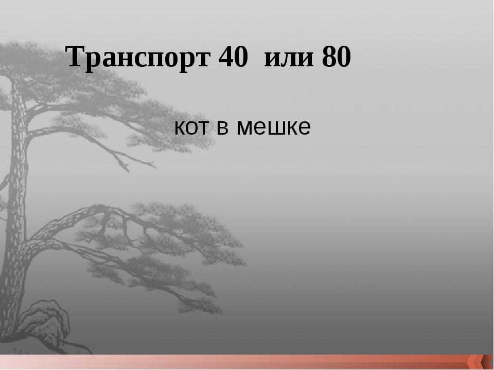 Блокада в цифрах 40 До какой отметки опускался столбик термометра в Ленинград...
