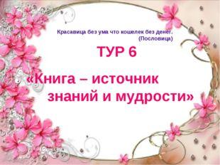 ТУР 6 «Книга – источник знаний и мудрости» Красавица без ума что кошелек без
