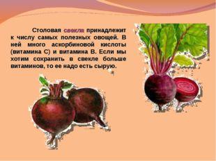 Столовая свекла принадлежит к числу самых полезных овощей. В ней много аскор