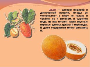 Дыня — ценный пищевой и диетический продукт. Плоды ее употребляют в пищу не