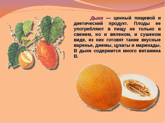 Дыня — ценный пищевой и диетический продукт. Плоды ее употребляют в пищу не...