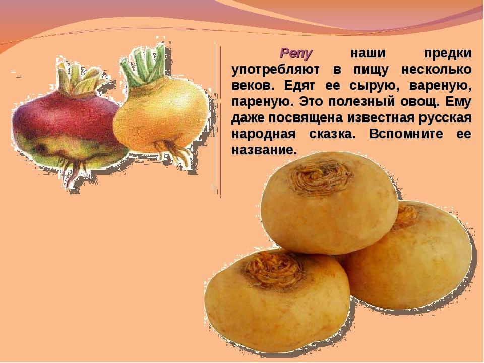 Репу наши предки употребляют в пищу несколько веков. Едят ее сырую, вареную,...