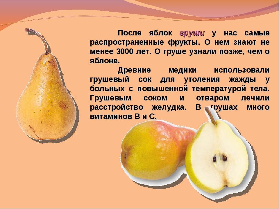 После яблок груши у нас самые распространенные фрукты. О нем знают не менее...