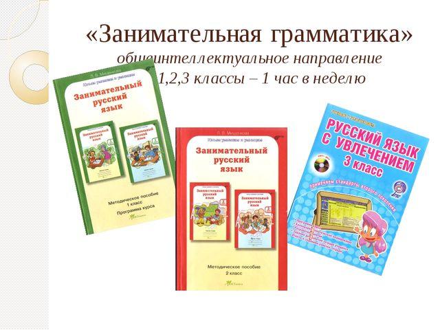 «Занимательная грамматика» общеинтеллектуальное направление 1,2,3 классы – 1...
