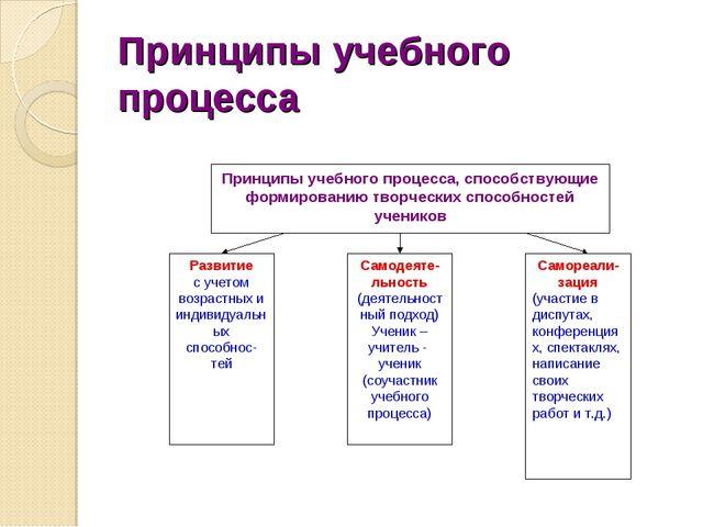 Принципы учебного процесса