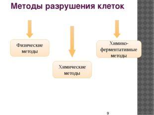 Методы разрушения клеток Физические методы Химические методы Химико-ферментат