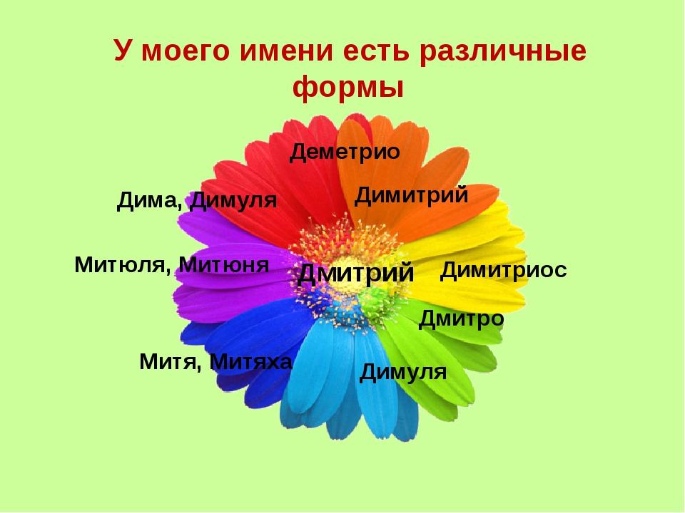 У моего имени есть различные формы Дмитрий Дима, Димуля Деметрио Димитриос Дм...