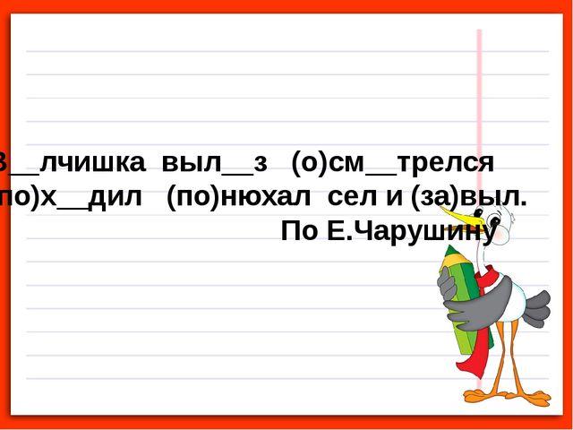 В__лчишка выл__з (о)см__трелся (по)х__дил (по)нюхал сел и (за)выл. По Е.Чаруш...