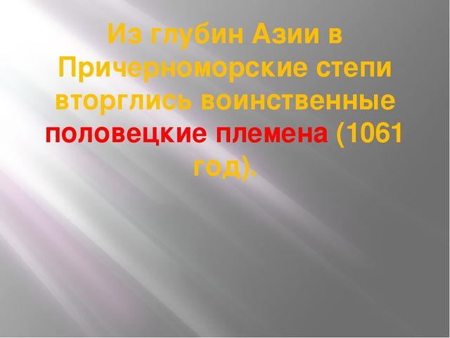 Из глубин Азии в Причерноморские степи вторглись воинственные половецкие плем...