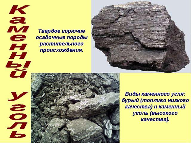 Твердое горючие осадочные породы растительного происхождения. Виды каменного...