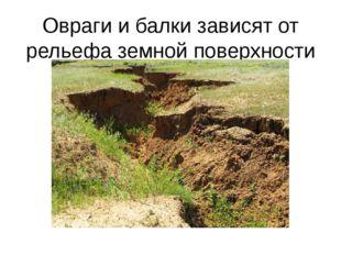 Овраги и балки зависят от рельефа земной поверхности