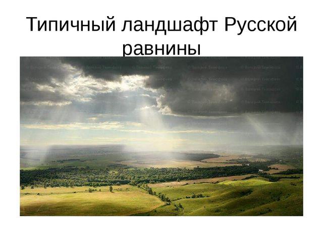 Типичный ландшафт Русской равнины