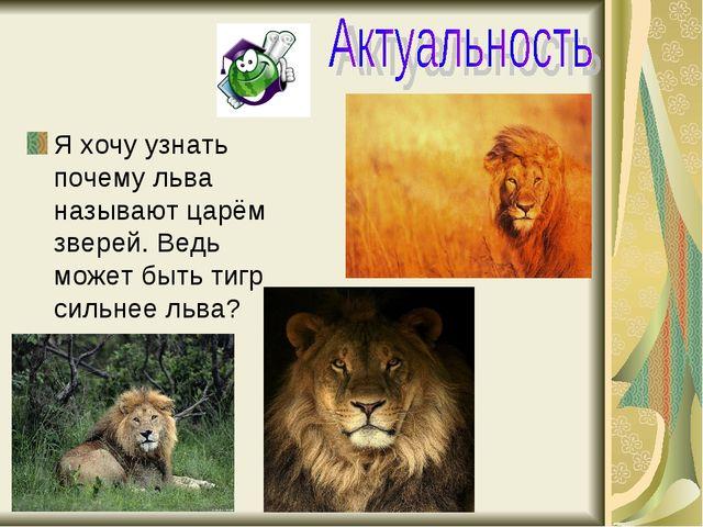 Я хочу узнать почему льва называют царём зверей. Ведь может быть тигр сильнее...
