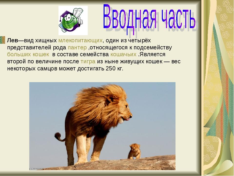 Лев—вид хищныхмлекопитающих, один из четырёх представителей родапантер,отн...