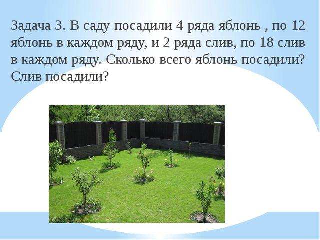 Задача 3. В саду посадили 4 ряда яблонь , по 12 яблонь в каждом ряду, и 2 ряд...
