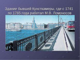 Здание бывшей Кунсткамеры, где с 1741 по 1765 года работал М.В. Ломоносов