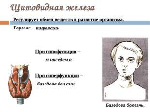 Щитовидная железа Регулирует обмен веществ и развитие организма. Гормон – тир