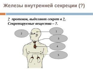 Железы внутренней секреции (?) ? протоков, выделяют секрет в ?. Секретируемые
