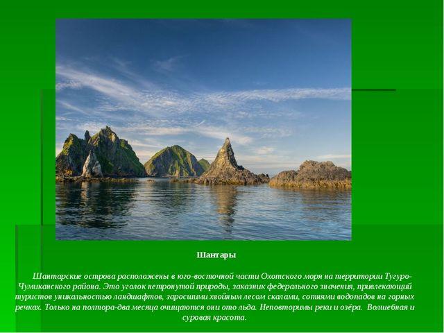 Шантары    Шантарские острова расположены в юго-восточной части Охотског...