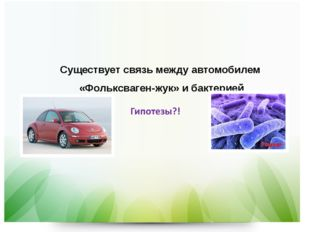 Существует связь между автомобилем «Фольксваген-жук» и бактерией