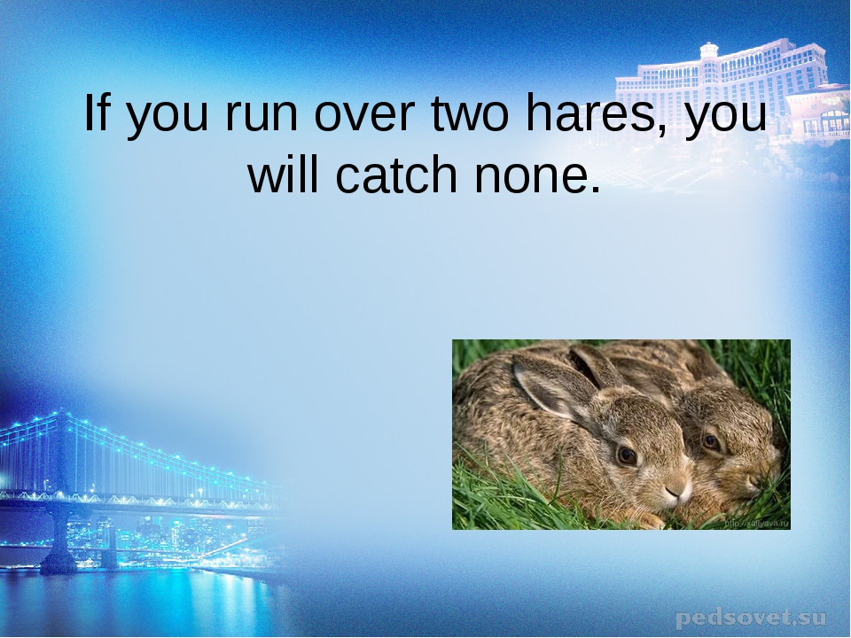 If you run over two hares, you will catch none.