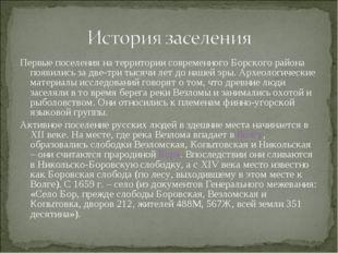 Первые поселения на территории современного Борского района появились за две-