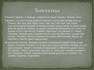 Большое Содомово - в переводе с мордовского языка «содомс» это выпас скота. Т