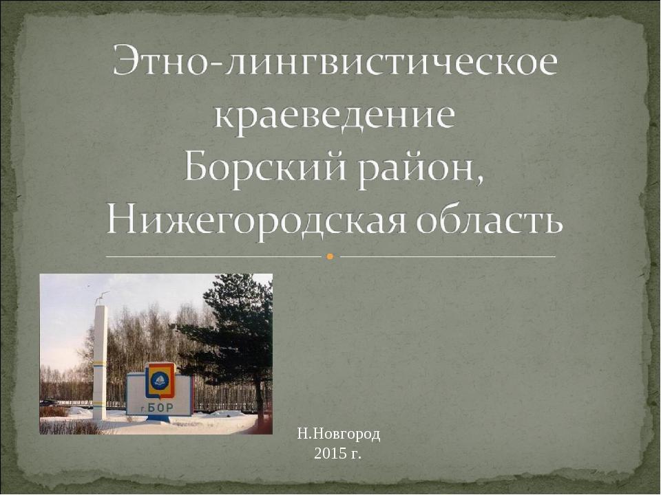 Н.Новгород 2015 г.