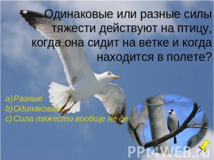 hello_html_296da247.jpg