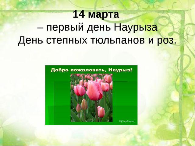 14 марта – первый день Наурыза День степных тюльпанов и роз.