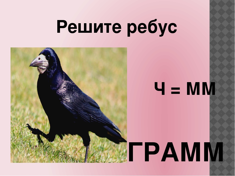 Решите ребус Ч = ММ ГРАММ