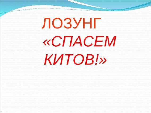 ЛОЗУНГ «СПАСЕМ КИТОВ!»