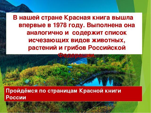 В нашей стране Красная книга вышла впервые в 1978 году. Выполнена она аналоги...